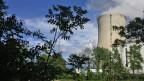 Das Kernkraftwerk Gösgen von der Aarau aus gesehen.