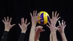 Häbnde greifen nach Volleyball.