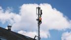 Mobilfunkantennen haben es schwer – nicht nur in Steffisburg.