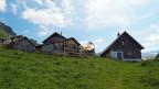 Die Alp Heidmannegg ist auf rund 1900 Meter im Urner Schächental gelegen.
