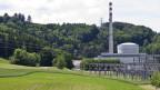 Auf dem Bild ist das AKW Mühelberg aus der Distanz zu sehen. Es steht vor einem Wald auf einer Wiese.