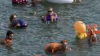 Viel Volk beim 37. Basler Rheinschwimmen