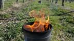 Frostkerzen sollen die Temperatur in Rebbergen erhöhen.