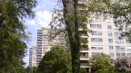 Hier kann vorübergehend niemand wohnen: Die drei Hochhäuser beim Stausee von Birsfelden müssen saniert werden.