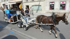 Am Montag waren sie (vorläufig) zum letzten Mal unterwegs in Avenches VD: Die elektronisch unterstützten Pferdegespanne für die Abfallentworgung.