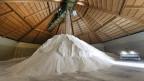 Rund 1000 Tonnen Salz liegen in Bex an Lager.