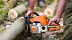 Waldarbeit - viele Waldbesitzer kennen sich damit nicht aus.