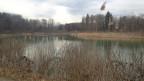 Die Aargauer Auenlandschaften sind wertvolle Naturgebiete.