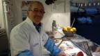 Seit 45 Jahren für die Fischmenues der Sankt Galler mitverantowrtlich.