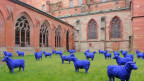 Blaue Plastikschafe grasen derzeit beim Basler Münster