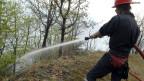 Neues Warnsystem für Waldbrandgefahr soll Pikettdienste einsparen.