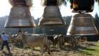 So stören die Kuhglocken niemanden - am Hals der Kühe schon eher.
