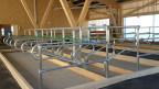 In diesem Stall wird für möglichst wenig Treibhausgas geforscht.
