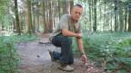 Der stellvertretende Aargauer Kantönsförster Marcel Murri