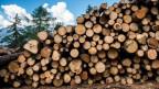 Vom Holzverkauf können die Bürgergemeinden nicht mehr leben