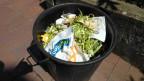 Grüner Abfall mit Plastiksäcklein.