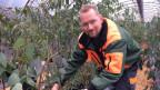 Urs Lüscher ist mit seiner Firma neu Futterlieferant für den Zoo Zürich.