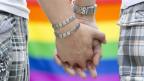 Auch im toleranten Zürich sind Schwule vor Übergriffen nicht sicher.