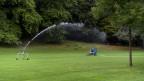Ein Park wird bewässert.