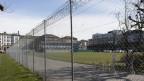 Blick durch den Maschendrahtzaun auf die Kasernenwiese.