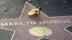 La chantadura Marilyn Monroe