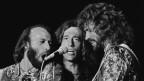 Bee Gees durant in concert