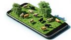 visualisaziun da pastira cun vatgas sin in telefonin e 3 dimensiuns