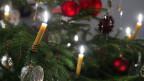 Pignol da Nadal cun chandailas che ardan