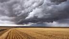 Dunkle Gewitterwolken ziehen über einem abgemähten Feld auf.