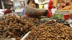 Frau in Thailand verkauft Insekten.