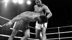 Ali gegen Foreman (Bild: Keystone)