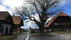Der Bauernhof Siegenthal in Landiswil.