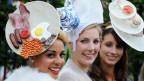 Very british - 3 Ladies in Ascot