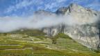 Audio «Weinland Schweiz: Das Wallis» abspielen.
