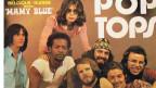 Pop Tops aus Spanien