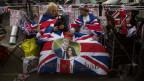 Royals-Fan hält Flagge mit Meghan und Harry in die Kamera.