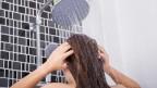 Nach längerer Abwesenheit das Wasser laufen lassen vor dem Duschen, das hilft gegen Legionellen.