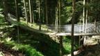 «Naturena»-Weg: Die kleinste Hängebrücke der Schweiz auf dem Raten.
