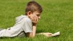 Ein Junge liest ein Buch auf einer Wiese