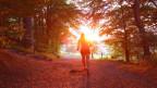 Frau läuft in den Sonnenaufgang.