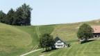 Eine solche Appenzeller Landschaft versteht Daniela Pauli, Geschäftsführerin von Forum Biodiversität Schweiz, unter Sonntagslandschaft.