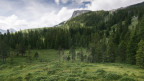 Die Moorlandschaft im Luzerner Entlebuch, unterhalb der Schrattenfluh.