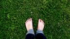 Barfuss auf dem Rasen.