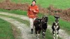 Karin Erni spaziert mit ihren Ziegen auf einem Naturweg.