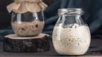 Sauerteig Mutterhefe im Glas.