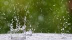 Regentropfen prasseln auf nassen Untergrund