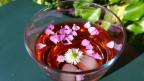 Audio «Blüten für erfrischende Blütenbowlen» abspielen.