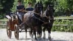 Eine Kutsche gezogen von zwei Pferden