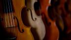 Nahaufnahme von verschiedenen Violinen