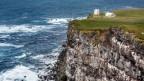 Island: Weisse Häuser auf einer grüner Wiese über einer meerumtosten Steilküste.